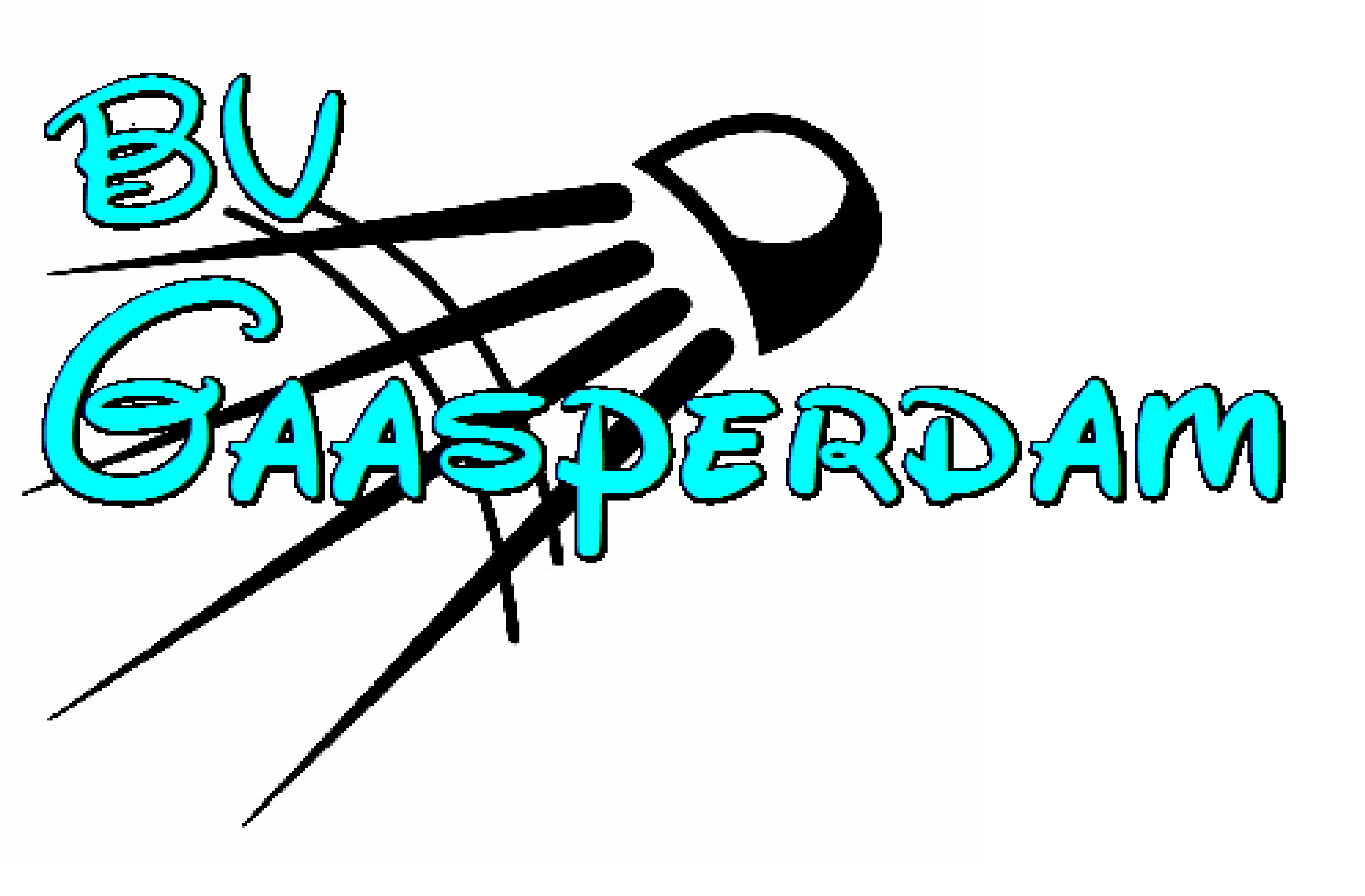 Ferry Anholt logo